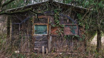 Abandoned overgrown wooden house