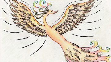 drawing of a beautiful bird
