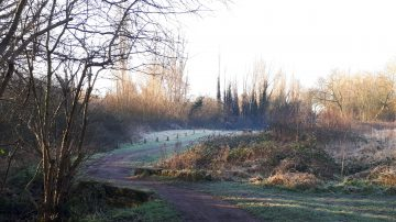 winding path on a crisp winter morning