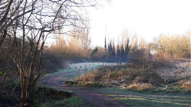 winding path on a crisp winter morning